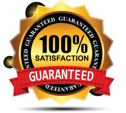 MSP Website Guarantee